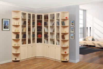 Библиотека вариант 1