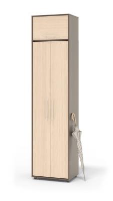 Шкаф распашной ШО-1+ШН-1